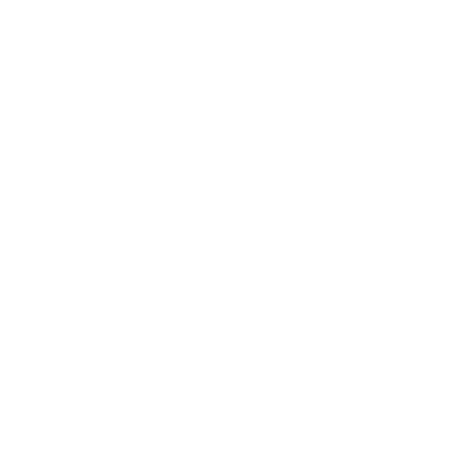 4020 Logo