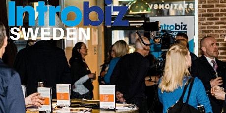 Introbiz Sweden Online Networking Event